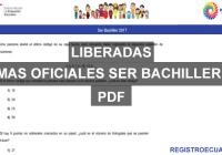 formas-oficiales-ser-bachiller-2017-registroecuador.com