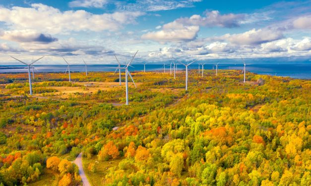 """Over 1,000 """"shovel-ready"""" projects set to kick-start Europe's green recovery: EY"""