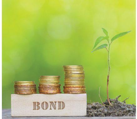 KEPCO's green bond failed the ESG market test