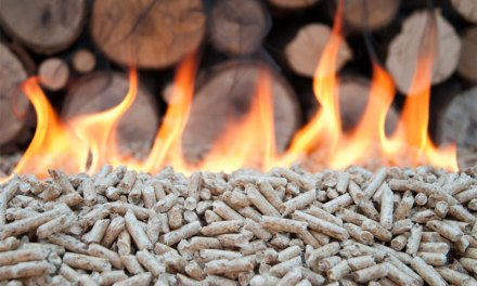 Strong Growth Potential in Indonesia Biomass from Cofiring