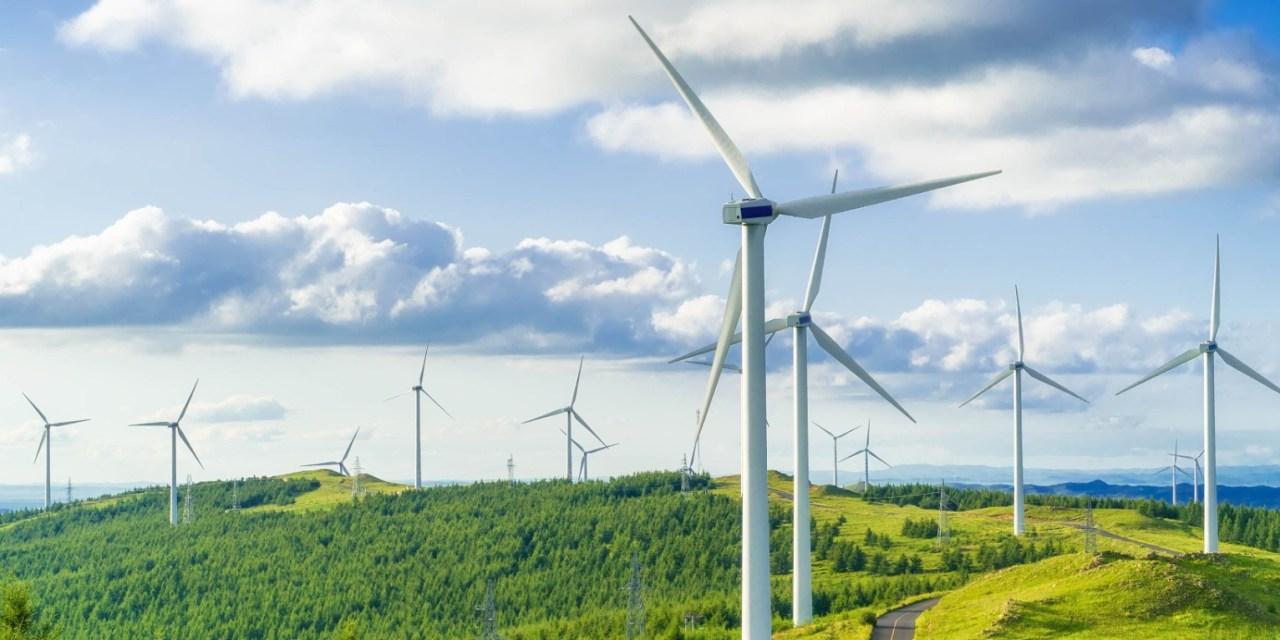 Amazon surpasses Google in renewable energy offtake
