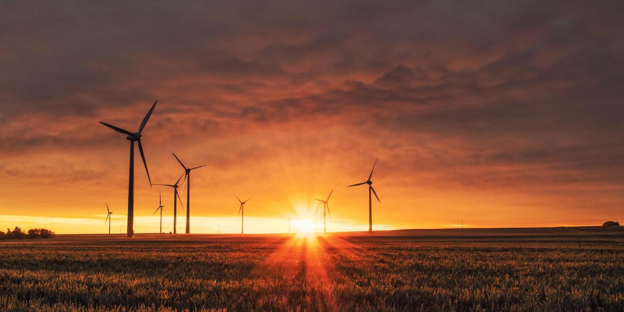 Wind power industry to install 71.3 GW in 2020, showing resilience during COVID-19 crisis