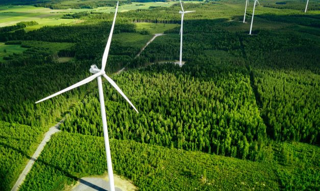 Nearly 30 GW of new wind power capacity auctioned in H2 2020, a clear signal that growth is back on-track