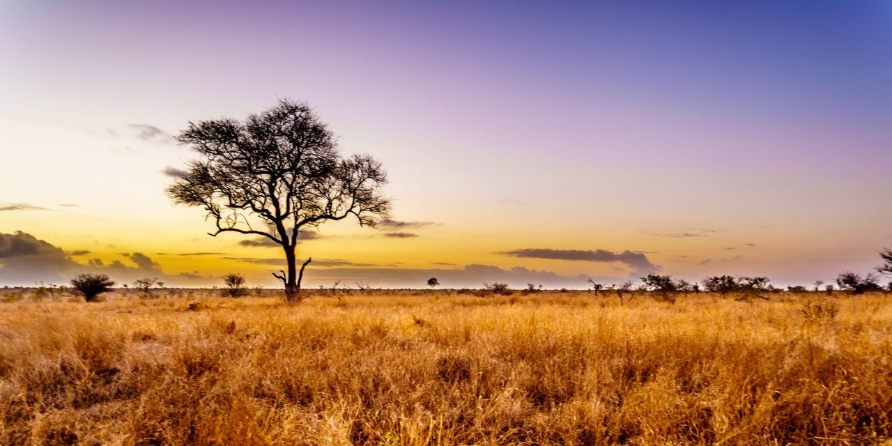 Enel and Qatar Investment Authority partner for renewable energy development in Sub-Saharan Africa