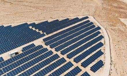 Seven bidders emerge as winners in Israel's 608 MW solar auction
