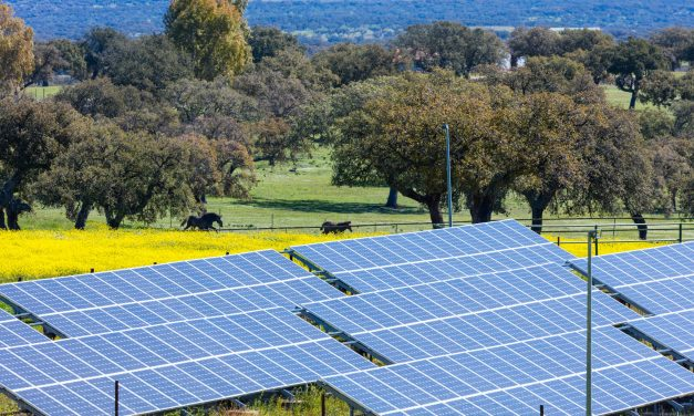 EDP Renewables acquires 628 MW of renewable energy assets in Chile