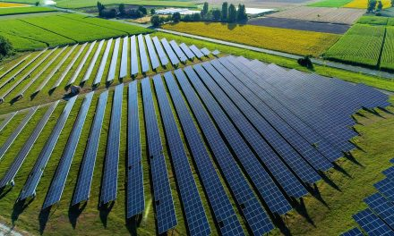 Telecom giant Orange to procure 100 GWh of renewable power from Total for 20 years in France