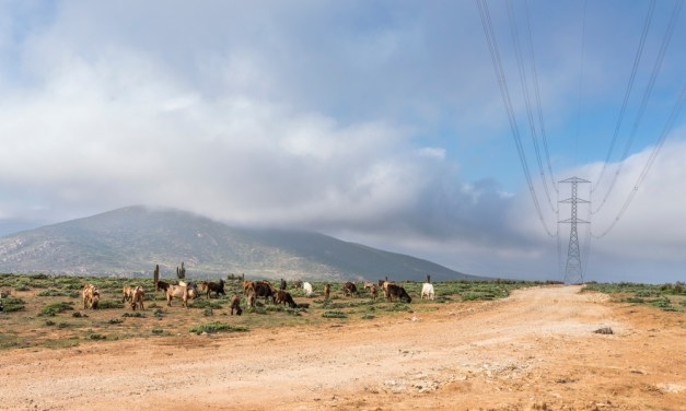Paving way for renewable integration in Chile