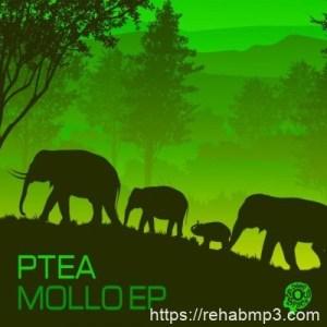 EP: PTea – Mollo (Zip File)