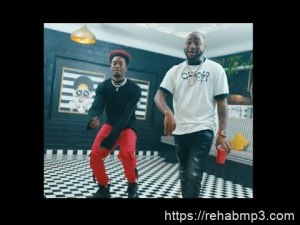 VIDEO: Davido - Mafa Mafa ft. Peruzzi, Dremo & The Flowolf
