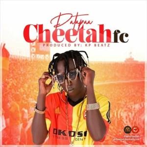 cheetahfc