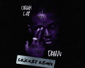 Damn (Cricket Remix)