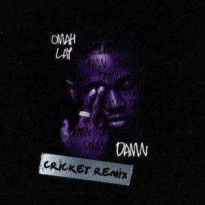 Damn (Cricket Remix)