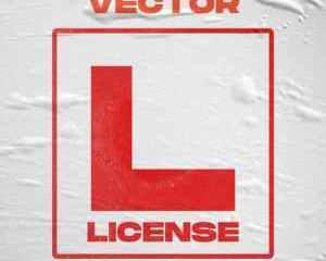 Vector License Mp3 Download