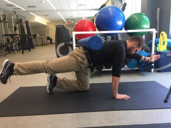 bird dog, Proprioception, back pain, core, physical therapy