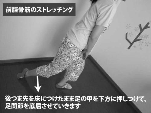前脛骨筋のストレッチング