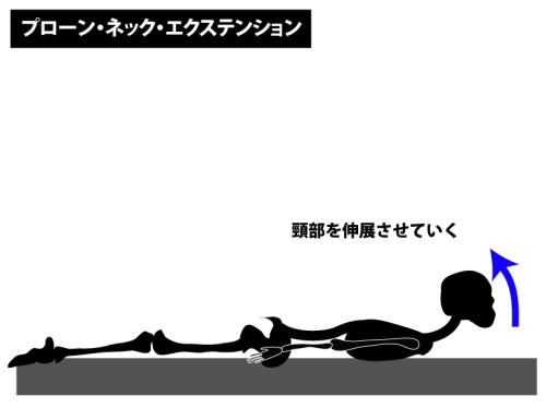 筋トレ|プローン・ネック・エクステンション|頭半棘筋,頚半棘筋