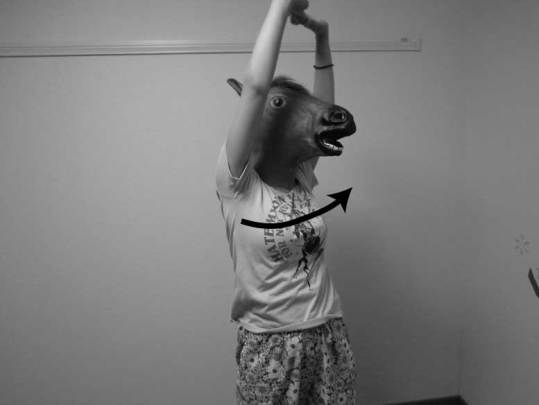内腹斜筋,ストレッチ,方法,体幹回旋
