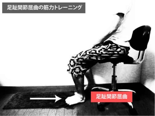筋トレ|足趾屈曲
