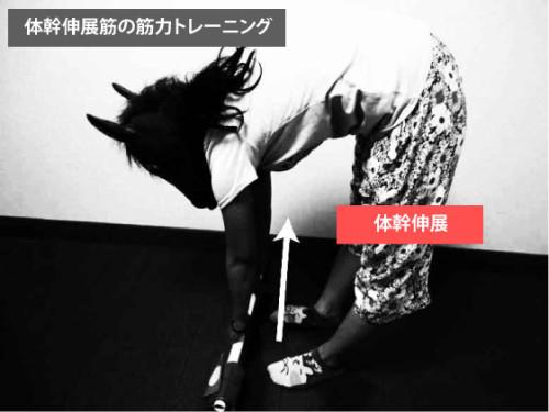 Stiff-legged-deadlif|筋トレ|脊柱起立筋,多裂筋