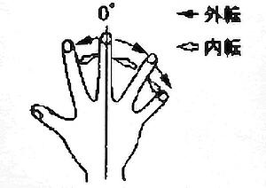 指関節内転・外転の関節可動域(正常値)
