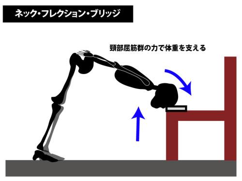 筋トレ|ネック・フレクション・ブリッジ|頸部屈筋群