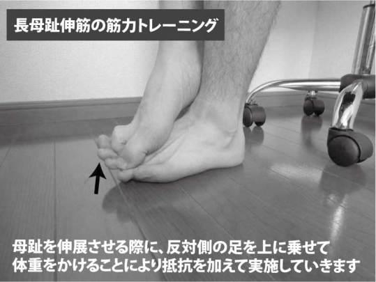 長母趾伸筋の筋力トレーニング