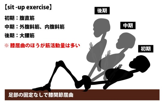 sit-up|内腹斜筋|外腹斜筋の筋力トレーニング
