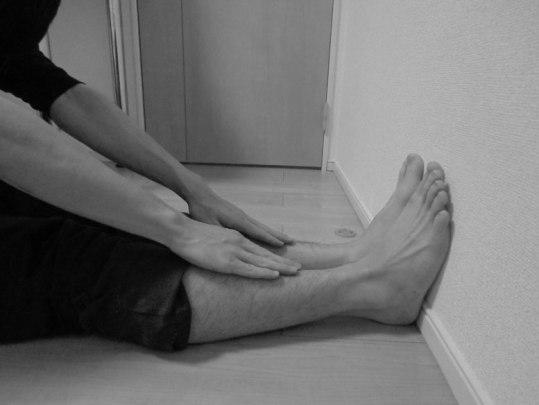 体幹前屈検査|ハムストリングの短縮|スーパーフィシャルバックライン