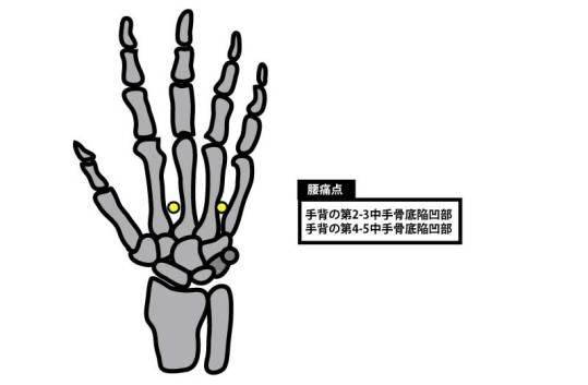 経穴|腰痛に効くツボ|腰痛点|手背