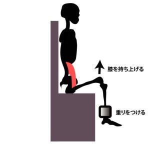 大腰筋の筋力トレーニング①