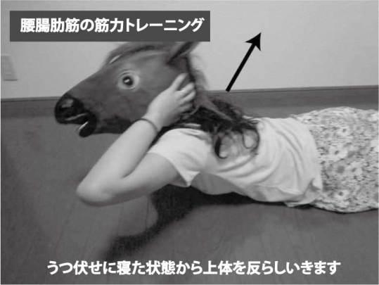 腰腸肋筋の筋力トレーニング