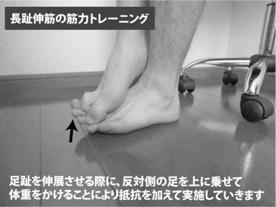 長趾伸筋の筋力トレーニング