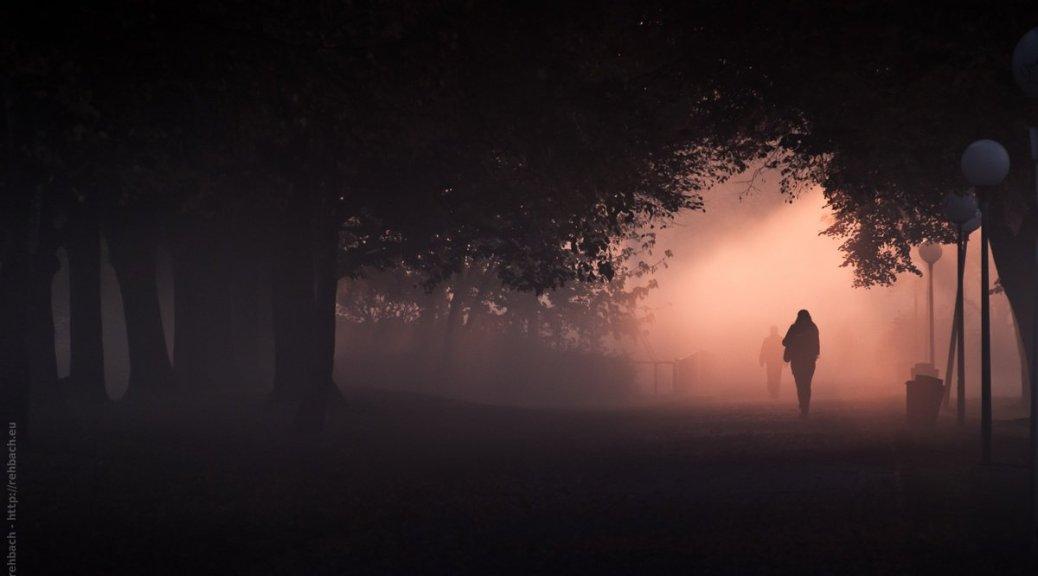 Menschen gehen durch eine Allee mit dichtem Nebel