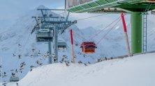 Vögel am Hochalter im Skigebiet Kühtai