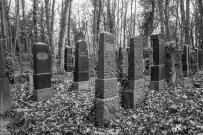 SDIM0083-Juedischer-Friedhof