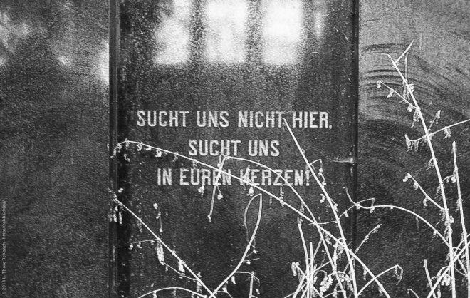 SDIM0124-Juedischer-Friedhof