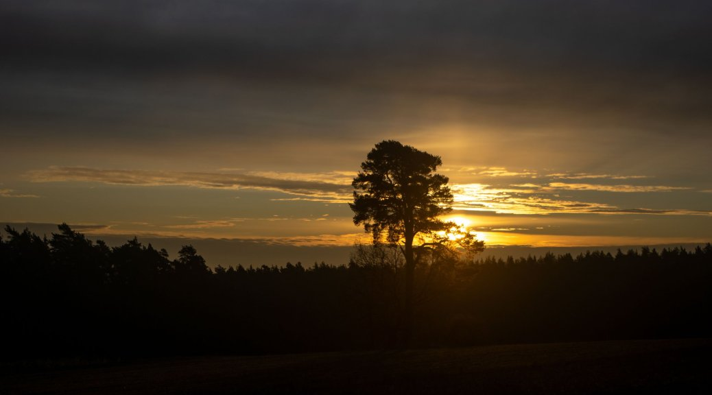 Sonnenaufgang in Staibra – Rehbach.eu - Bildermacher