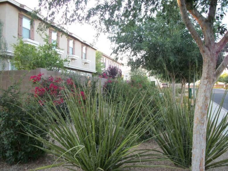 Townhomes in Muirfield Village