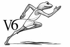 Pidapi V6 : la grenouille la plus rapide du monde