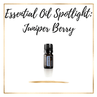 Essential Oil Spotlight: Juniper Berry