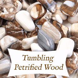 tumbling petrified wood