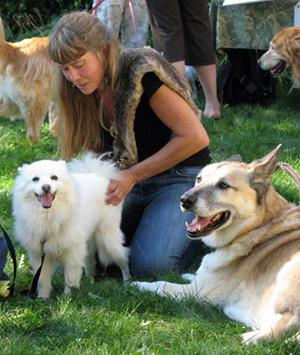 Rose De Dan Offers Reiki To American Eskimo Dog Q-tip Www.reikishamanic.com