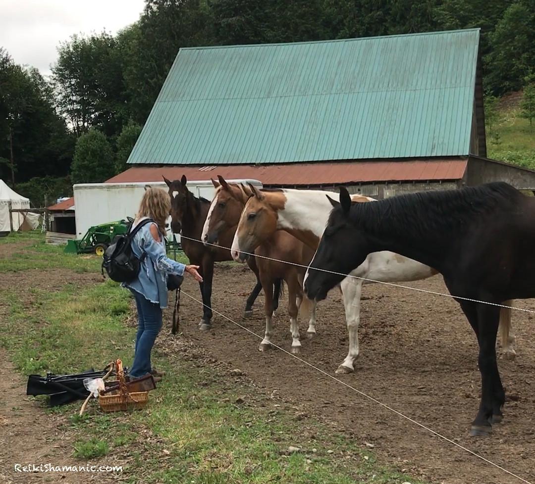 Breakfast Reiki For Horses