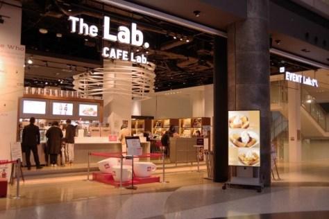 the lab 1
