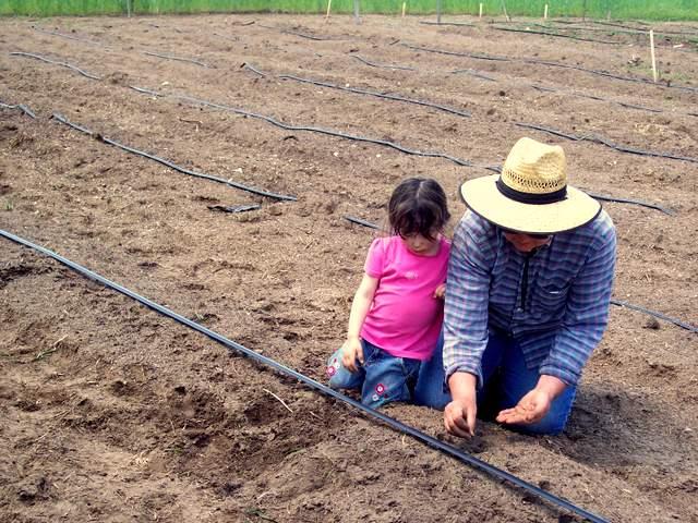 Carol with granddaughter Alyssa planting beets