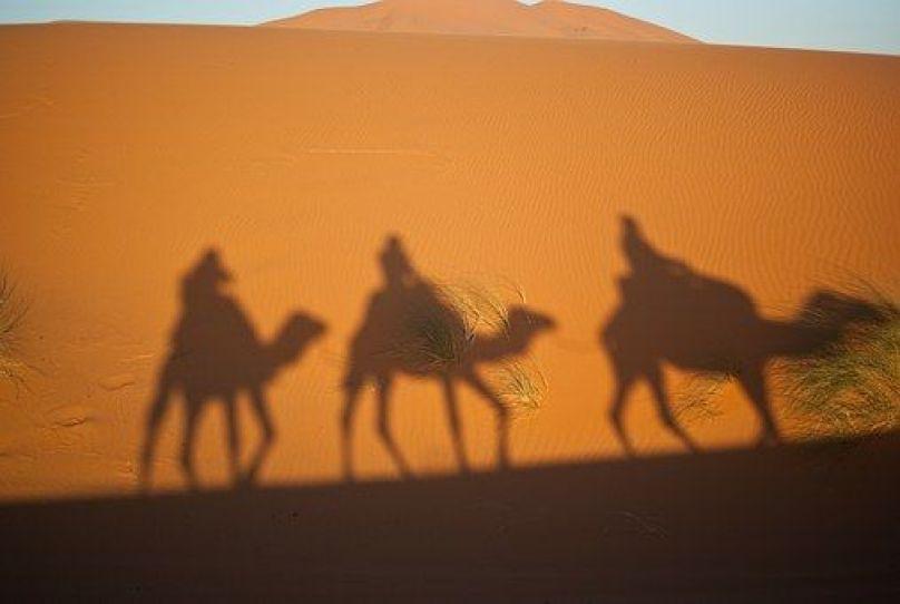 camels-897658__340 Reyes Magos