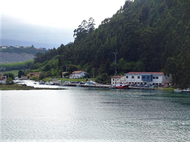 Pechón en Cantabria