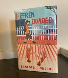 Efrén Divided book cover