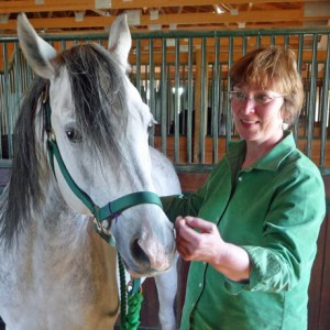A light touch in all your interaction with your horse.